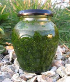 wild-garlic-puree